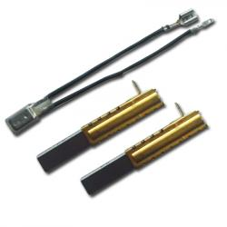 Kohlebürsten + Temperatur Sensor für PX80, PX85, P80, C80, M03/1 TF, SC20FC, SM20FD & SX20FC Zentralstaubsauger AERTECNICA CM857